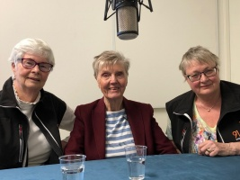 Barbro Westerholm, Gunnel Agrell Lundgren, Lena Hjelmérus